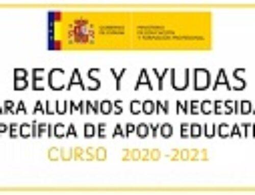 Publicación convocatoria Ayudas de E. E. del Mº Educación curso 2020-2021